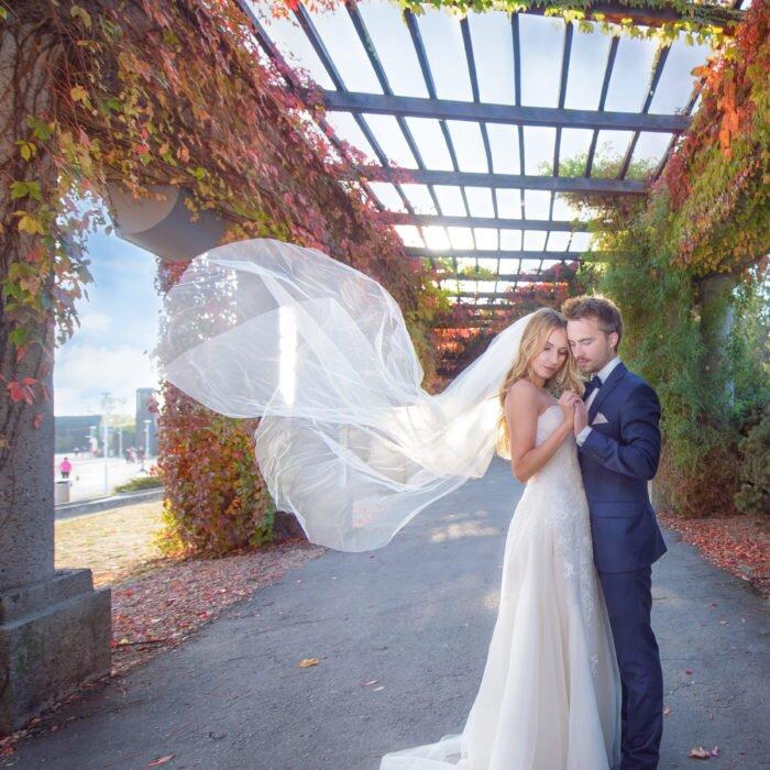 sesje ślubne na pergoli, hala stulecia wrocław, zdjęcia ślubne pary młodej, fotograf na wesele 2020